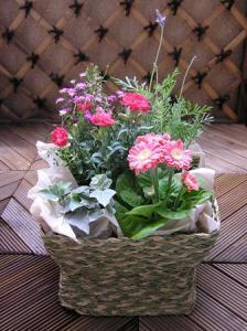 花屋のバイト3