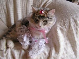 プリンセス5
