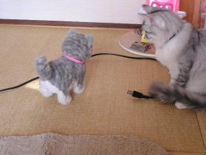 おもちゃのネコ1