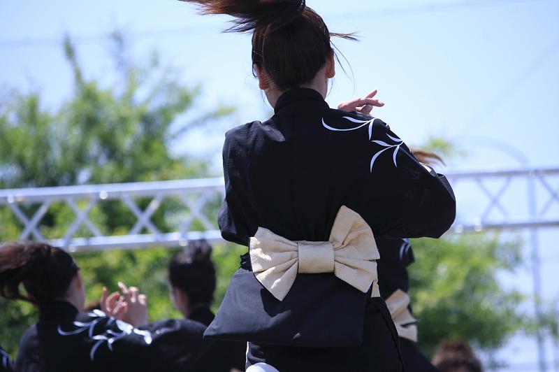 inuya-yosakoi020.jpg