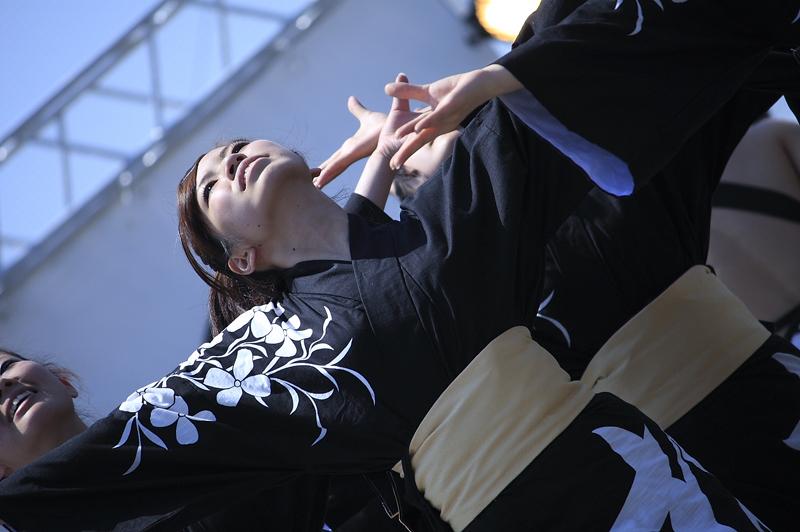inuya-yosakoi023.jpg