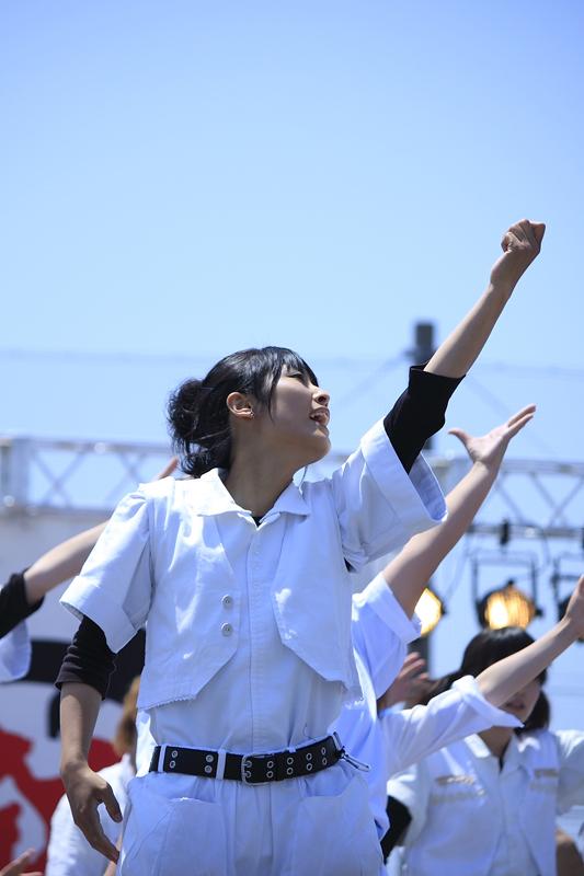 inuya-yosakoi033.jpg