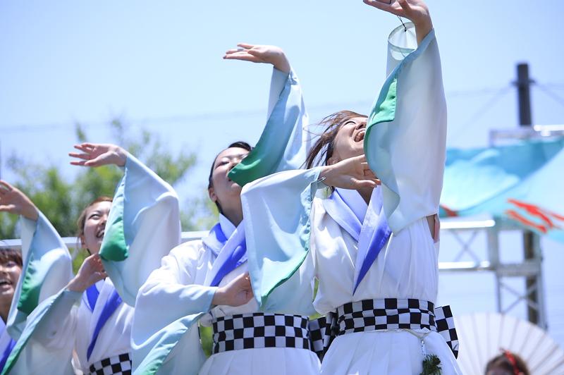 inuya-yosakoi074.jpg