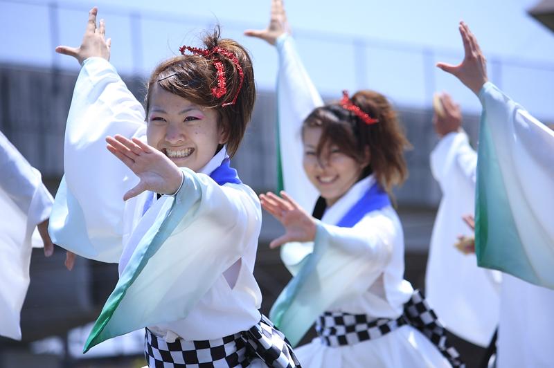 inuya-yosakoi078.jpg