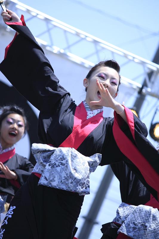 inuya-yosakoi085.jpg