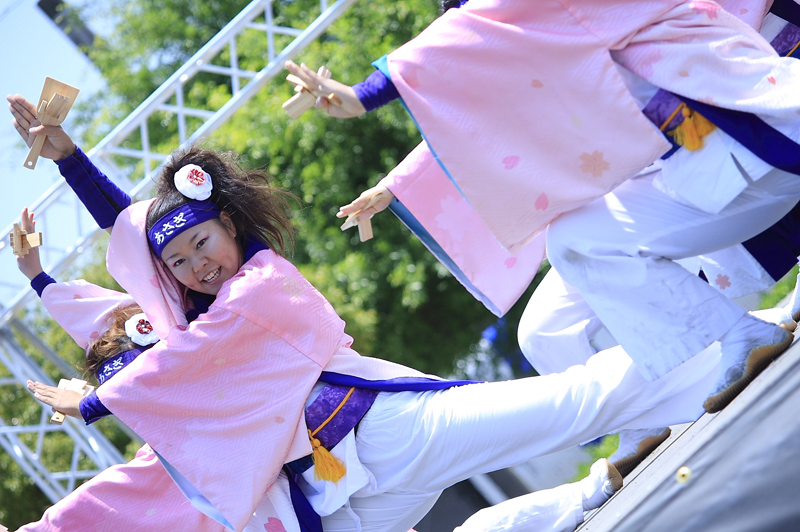 inuya-yosakoi095.jpg