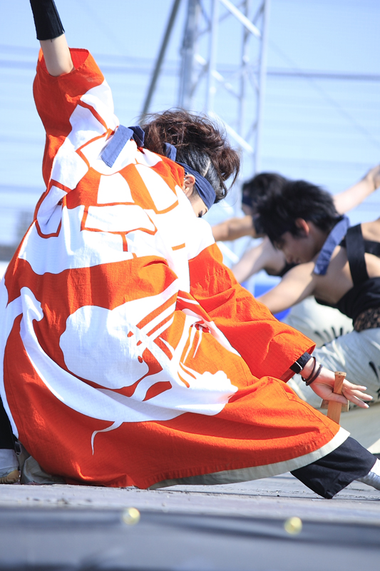 inuya-yosakoi162.jpg