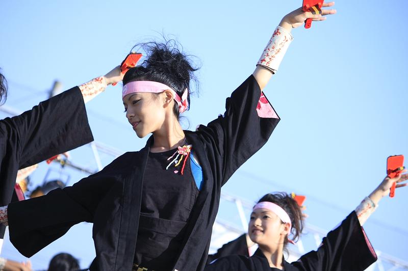 inuya-yosakoi202.jpg