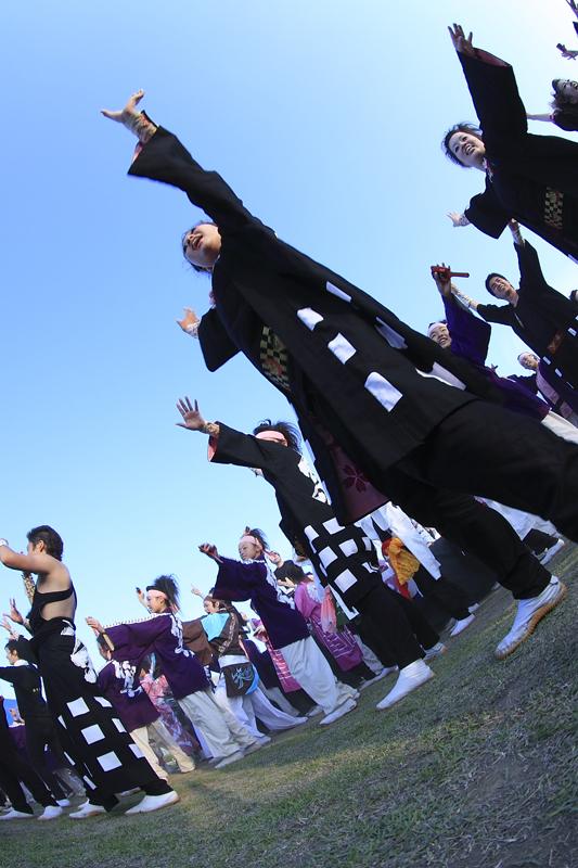 inuya-yosakoi216.jpg