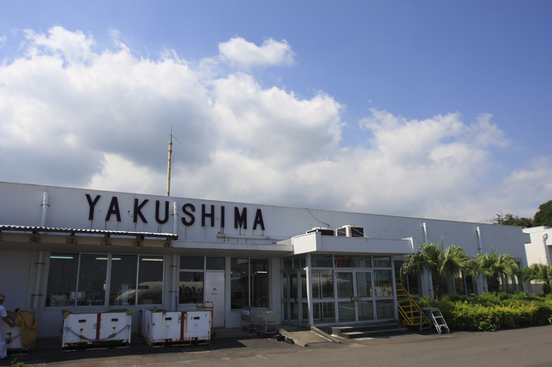 yakushima004.jpg