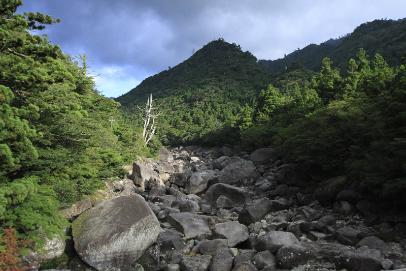 yakushima068.jpg