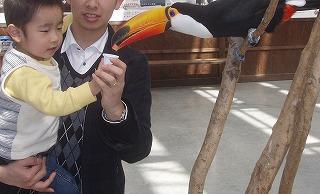 s-2009.3.24花鳥園 018