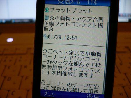 P1060872_450.jpg