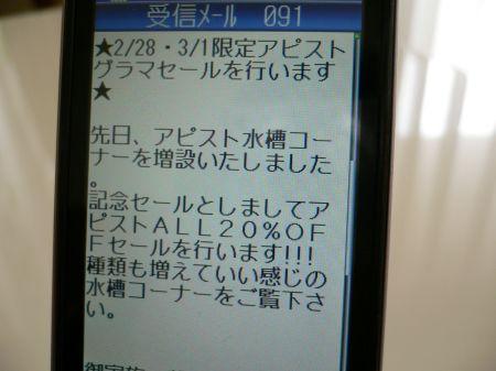 P1070275_450.jpg
