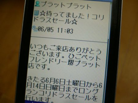 P1080585_450.jpg