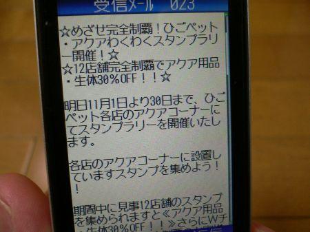 P1100848_450.jpg
