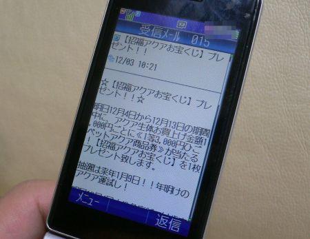 P1110373_450.jpg