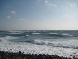 寒そうな海