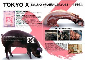 tokyox.jpg