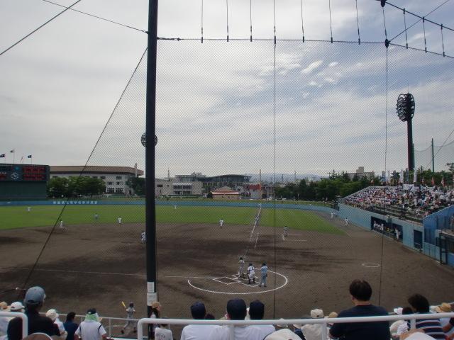 涙の中の虹を見つけに*:・゜.☆ ~セラピールームアルクトゥールス~-野球