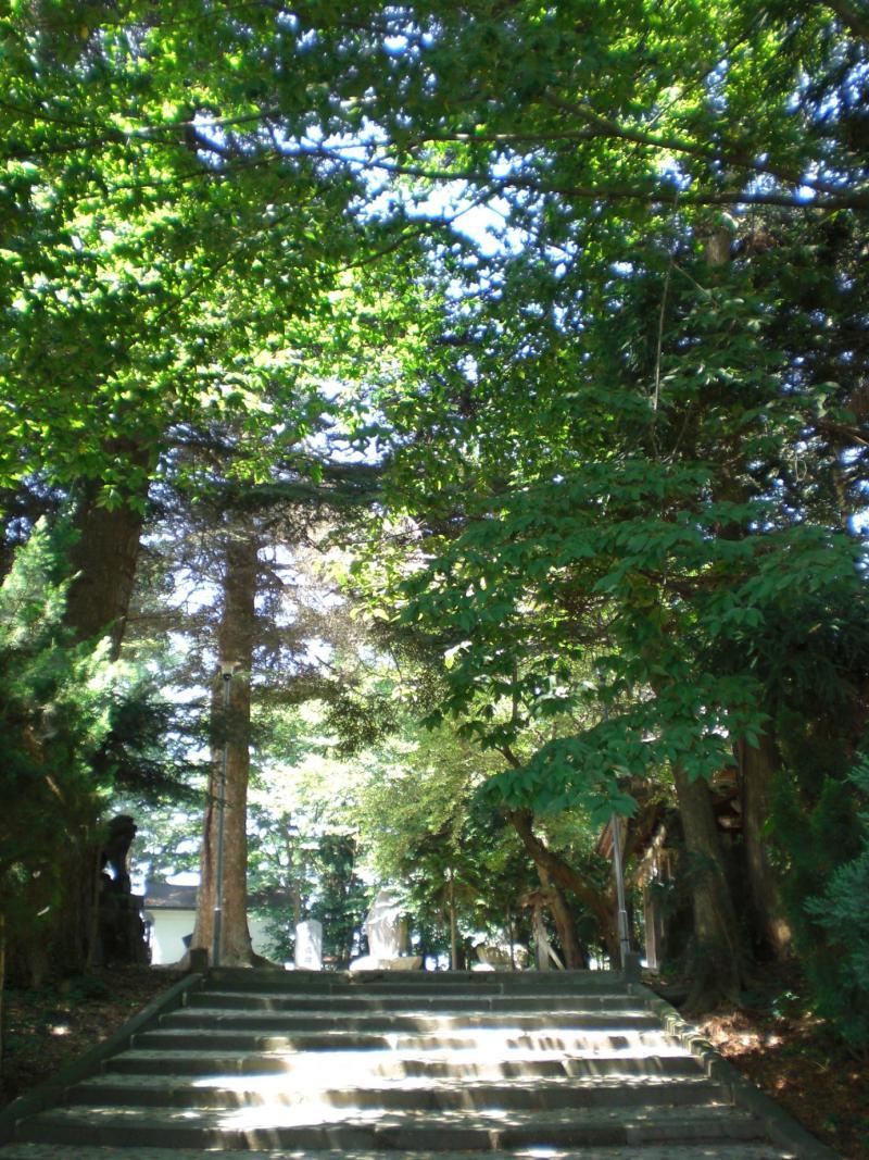 涙の中の虹を見つけに*:・゜.☆ ~セラピールームアルクトゥールス~-猿賀神社