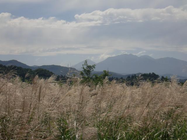 涙の中の虹を見つけに*:・゜.☆ ~青森市セラピールーム アルクトゥールス~-自然