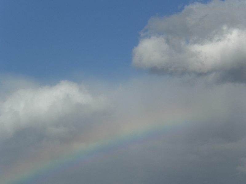 涙の中の虹を見つけに*:・゜.☆ ~青森市セラピールーム アルクトゥールス~-niji
