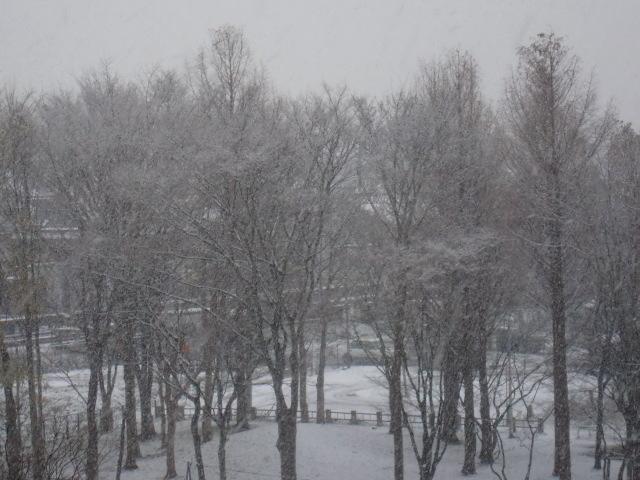 涙の中の虹を見つけに~青森市セラピールーム アルクトゥールス~  -snow