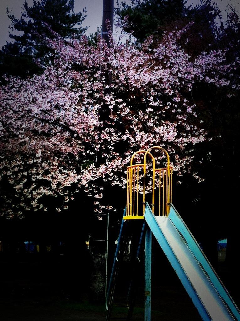 涙の中の虹を見つけに~青森市セラピールーム アルクトゥールス~  -sakura