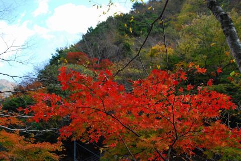 大釜の滝9