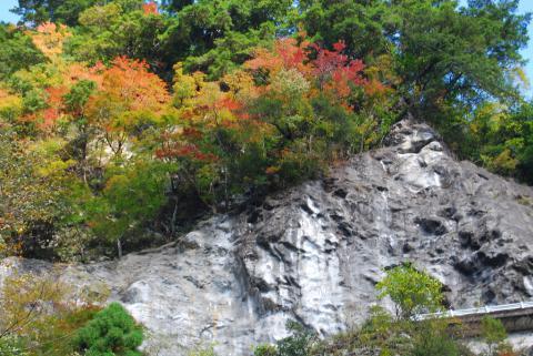 大釜の滝11