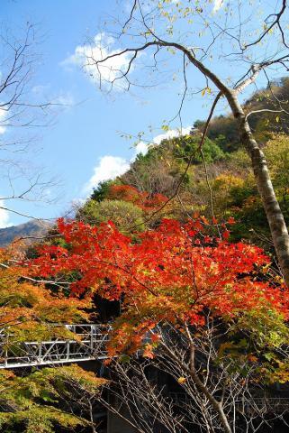 大釜の滝12