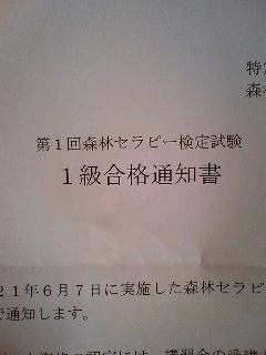 20090702235324.jpg