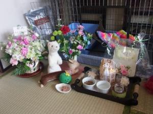 201201 キナリ初七日