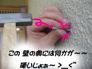 IMG_5475.jpg