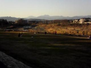 鶴の舞う川原