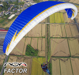 factor11.jpg