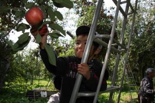 2008_10_17_f.jpg