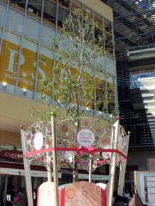 2009-10-21.jpg