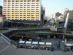 2009-11-10.jpg