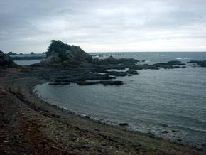 2009-11-12.jpg