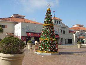 2009-11-23.jpg