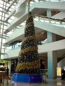 2009-11-25.jpg