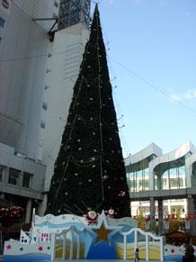 2009-11-27f.jpg