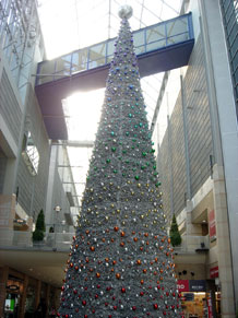 2009-11-2d.jpg