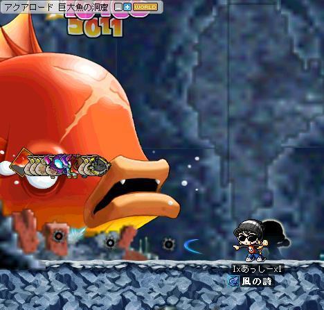 金魚21492