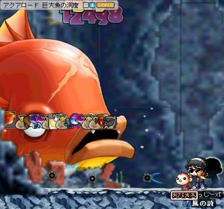 金魚4791471