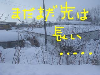 DSCN6415.jpg