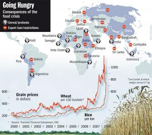 foodcrisis.jpg