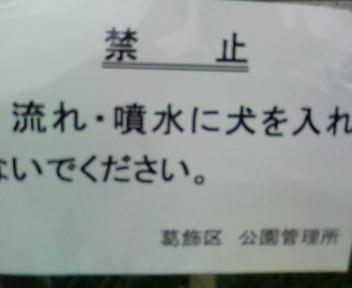 090714_180206.jpg